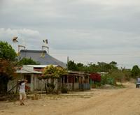 Habitantes de Vista Hermosa: entre coca, 'paras', Farc y 'falsos positivos'