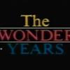 Los años maravillosos