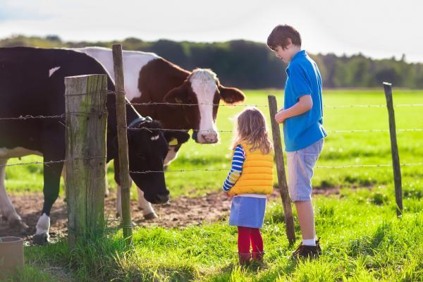 niños granja