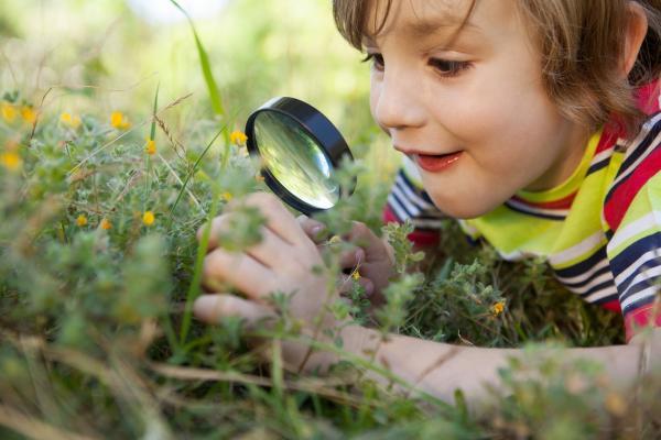 niños naturaleza