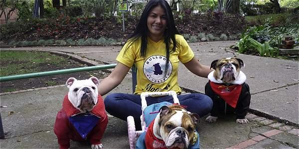 Maya, Magia y Ángel son los bulldog con los que Magia Alejandra comparte su vida, además de las docenas de perros que salva.