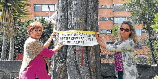 Con carteles, se plantan a protestar para evitar tala