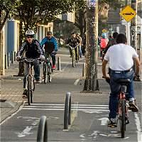 Las actividades para hacer en bicicleta en el día sin carro