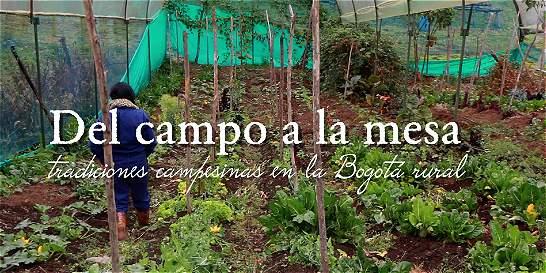 Del campo a la mesa: tradiciones campesinas en la Bogotá rural