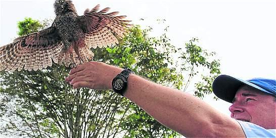 Una nueva vida para 122 animales silvestres que están en cautiverio