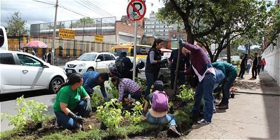 Estudiantes de la Pedagógica cambiaron la basura por flores