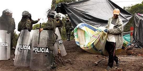 6.000 árboles talados, el saldo de la invasión en los cerros de Bogotá