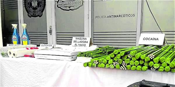 En Modelia, Bogotá, camuflaban coca en tallos de rosas