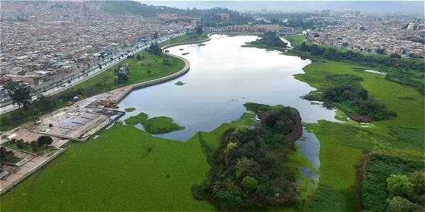Humedal Juan Amarillo en recuperación ambiental - Archivo Digital de  Noticias de Colombia y el Mundo desde 1.990 - eltiempo.com