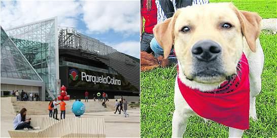 ¿Por qué ahora restringen el ingreso de mascotas a Parque La Colina?