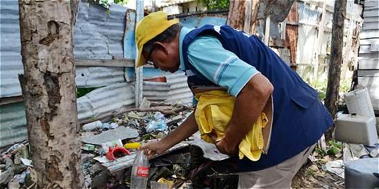 Alertan sobre problema de ratas en Barranquilla