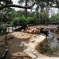 El zoológico ya tiene los diseños de su nueva sede