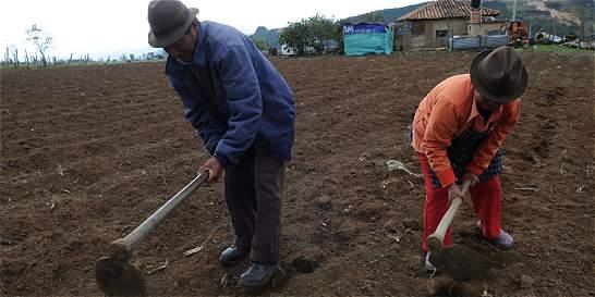 Boyacá tiene la tasa de envejecimiento más alta del país