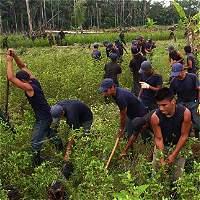 Lo que le tocó a Boyacá del Plan Colombia