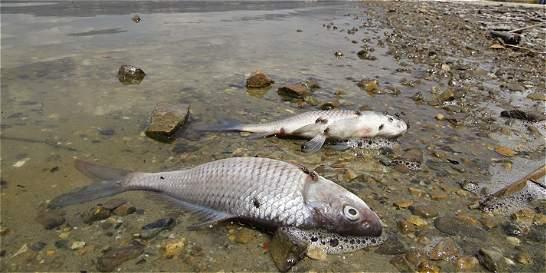 ¿Qué es lo que sucede con el lago Sochagota?