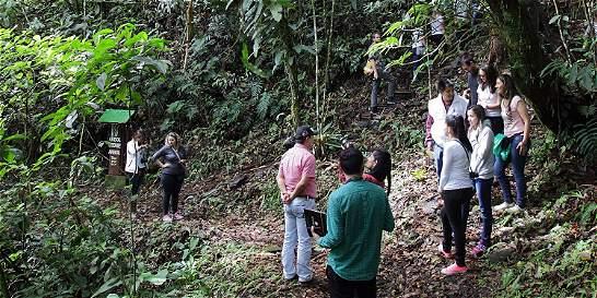 Ideam resalta el suroriente de Boyacá por no talar árboles