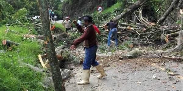 En la vía Toribío - El Palo, en el Cauca, también las fuertes lluvias generaron estragos como la caída de un árbol.