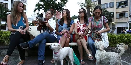 Polémica por perros intoxicados en parque de El Peñón