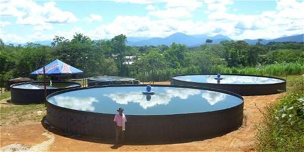 Las piscinas de peces instaladas en Uribe.
