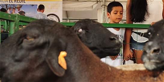 Expomalocas le apuntará a fortalecer el turismo en 2018