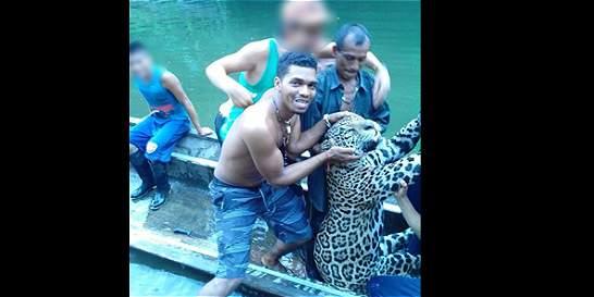 Piden investigar fotos de cacería de un jaguar