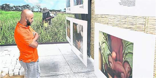 Museo de la Memoria de Medellín busca ser el nuevo referente de paz
