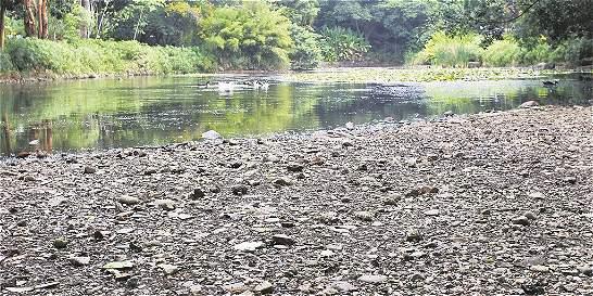 Calentamiento global seca la laguna del Jardín