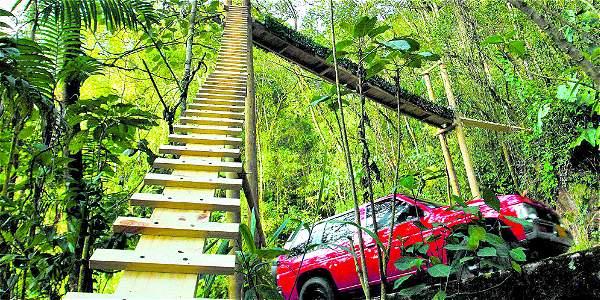 La vía El Escobero es uno de los tramos con mayor índice de colisiones de fauna silvestre con vehículos. Allí han sido atropellados especies amenazadas como el tigrillo lanudo.