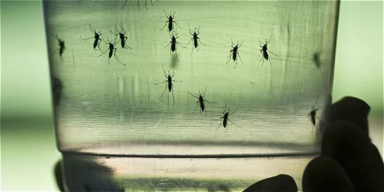 Prenden alarmas por posibles casos de zika y Guillain Barré