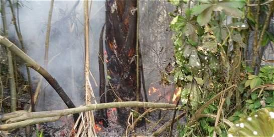 Bomberos atienden incendios en cuatro municipios de Antioquia