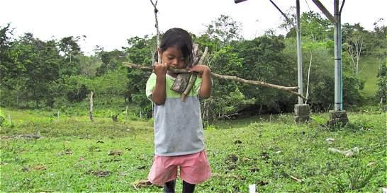 Cuatro niños indígenas muertos por paludismo