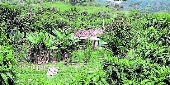 Familias campesinas le apuestan al turismo