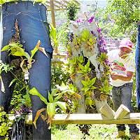 'Jarjeans' un jardín creativo que florece en pantalones usados