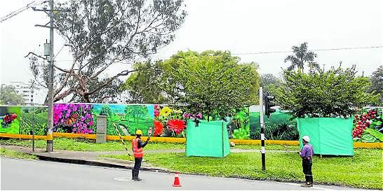 Talan 239 árboles en Medellín para construir centro comercial
