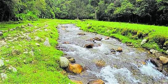 Crearán Consejo Departamental del Agua