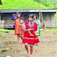 Indígenas regresaron a su tierra ancestral en Chocó