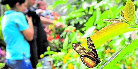 Entregan dinero por cuidar la naturaleza