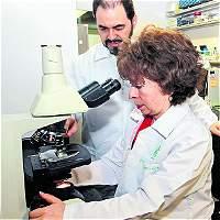 Buscan cura para la leucemia a partir de veneno de serpiente