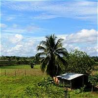 Presidente Santos pide investigar asesinato de reclamante de tierras