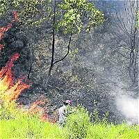 Alerta roja por probabilidad de incendios en más de 30 municipios