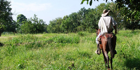 Controversia en proceso de restitución de tierras