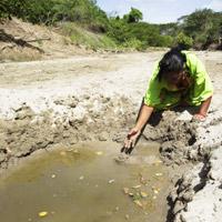La sed y la desesperanza del pueblo wayú