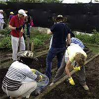 Historia de los patios que producen comida en Cartagena