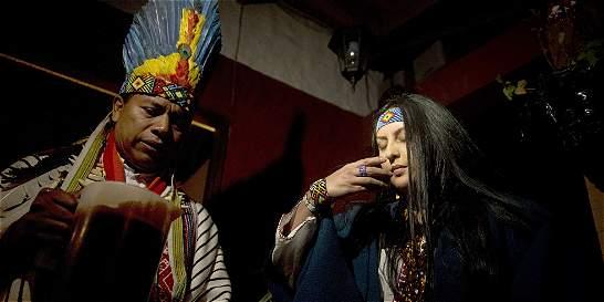 El yagé, de medicina tradicional indígena a moda urbana