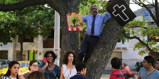 Acción popular busca frenar talas en Santa Marta
