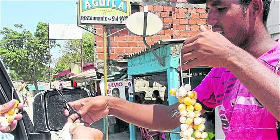 Sin control, la venta ilegal de fauna silvestre en Bolívar y Sucre
