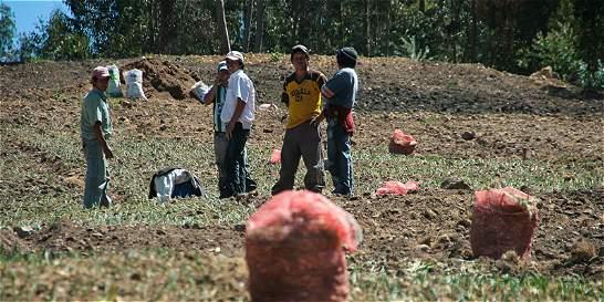 Buscan 'tumbar' delimitación del páramo de Santurbán