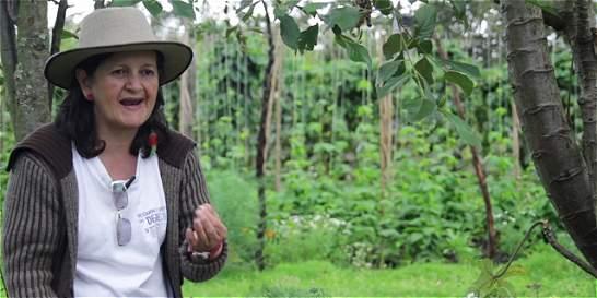 Un documental resalta el trabajo de las mujeres por la paz en Colombia