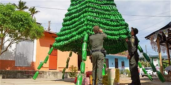 En el Catatumbo está el árbol de navidad ecológico más grande del país