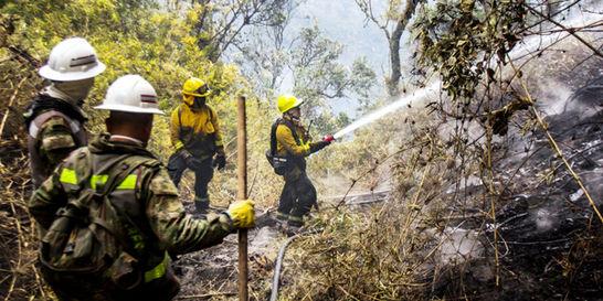 Regiones Andina, Caribe y Orinoquía están bajo riesgo de incendio